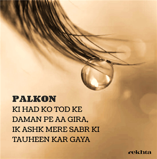 palko.n kii had ko to.D ke daaman pe aa giraa-Unknown